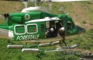 Come-Diventare-Guardia-Forestale
